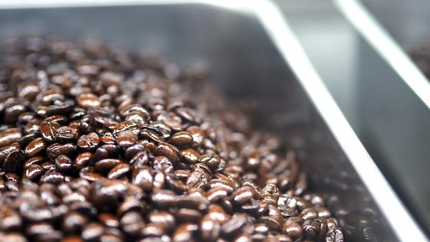 Много кофейных зерен из отличных источников со всего мира в серебряном металлическом подносе, который особенный ручной работы