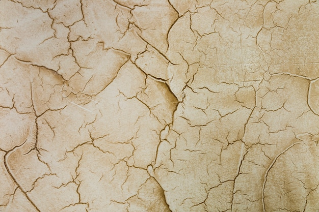 Many cracks in cement wall