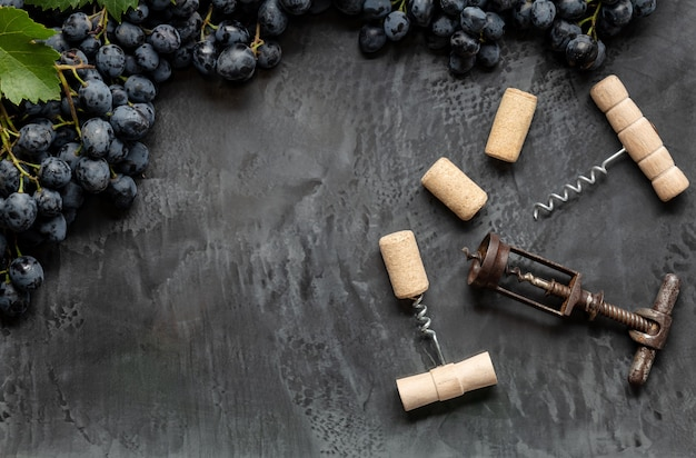 Many different corkscrews with open wine corks on dark concrete background in frame made of black grapes with copy space. degustation winetasting of wines drink. wine bar or restaurant.