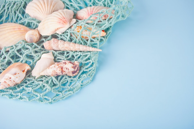 Many different seashells and fishing net. top view. copyspace.