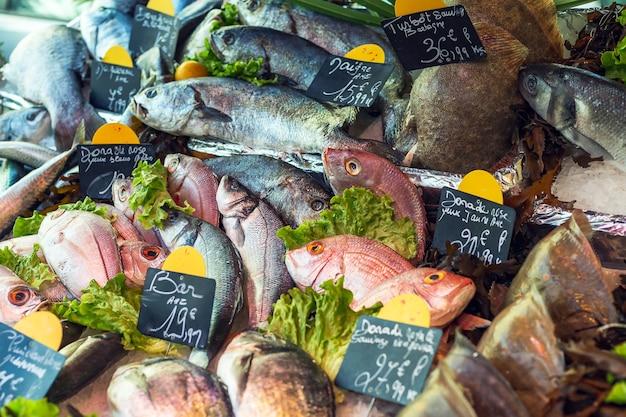 魚市場でのさまざまな種類の新鮮な生の魚