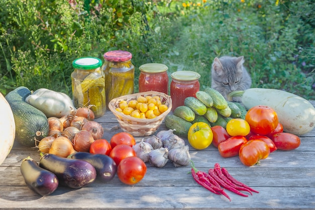 きゅうりのピクルストマト、さまざまな野菜や果物が通りの木製テーブルに横たわっています。