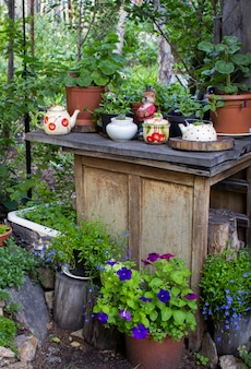 Many flower pots as a decoration in the garden at spring. decorative flowers on a logs at springtime