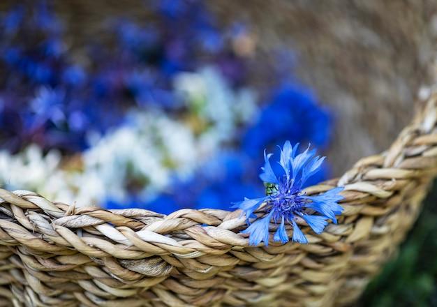 植物チンキを作るためのバスケットにたくさんの花