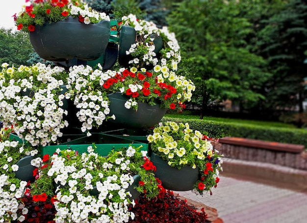 오후에 여름에 큰 꽃병에 많은 꽃