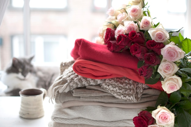 Many flowers of roses. different warm clothes and slippers near the window and a cat. sweaters for autumn and winter. tea and a cat. free space for text.