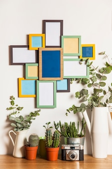 Many frames on wall and plants