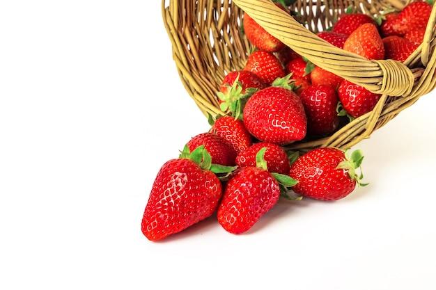 고리 버들 세공 바구니에서 떨어지는 많은 신선한 딸기 열매