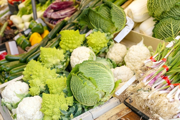 Many kinds of cabbage at market. cabbage romanescu verdone savoy cauliflower chinese cabbage