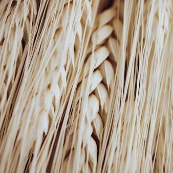 Many light wheat fibers and grains