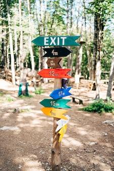 많은 여러 가지 빛깔의 화살표 포인터가 녹색 숲의 기둥에 매달려