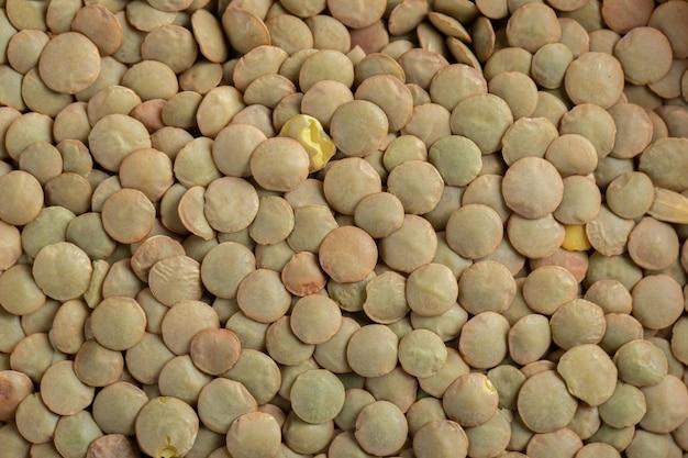준비되지 않은 말린 갈색 렌즈 콩의 대부분.
