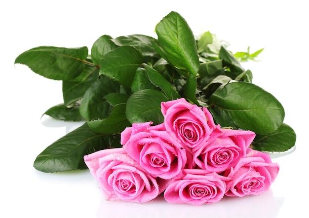 白で隔離される多くのピンクのバラ