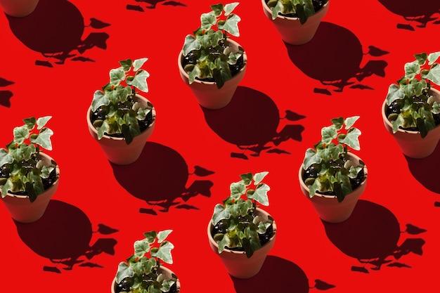 빨간색 배경에 냄비에 많은 식물 홈 원예 개념