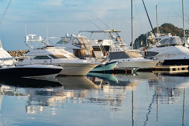 Многие моторные лодки пришвартованы к пристани для яхт с пальмами и голубым небом.