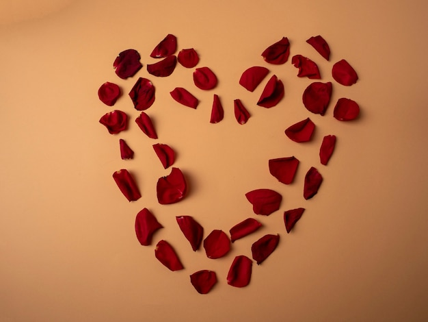 Many red rose petals lie in the shape of a large red heart on an orange background