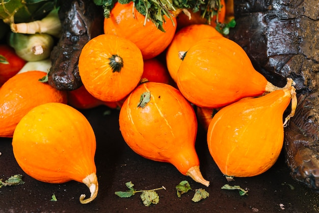 Many ripe harvested kuri squash