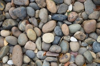 Many sizes and shapes of stones are used for garden decoration or making walk way