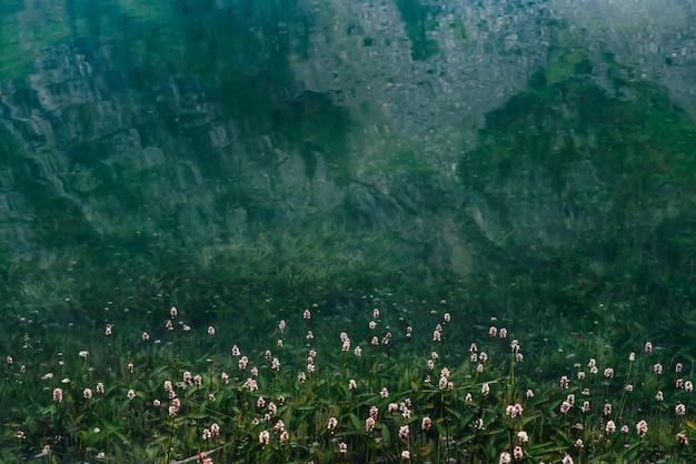맑은 물에 많은 작은 꽃
