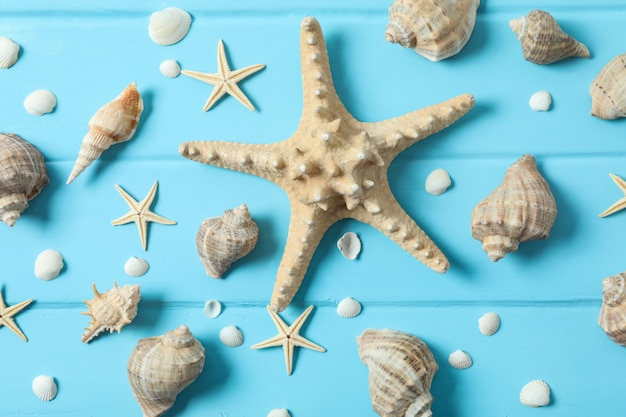 Many starfish and seashells on color wooden background, closeup and top view. summer vacation concept