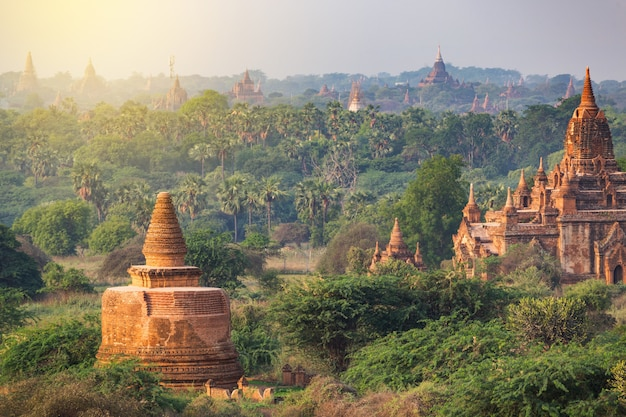 Many of temples of bagan in myanmar