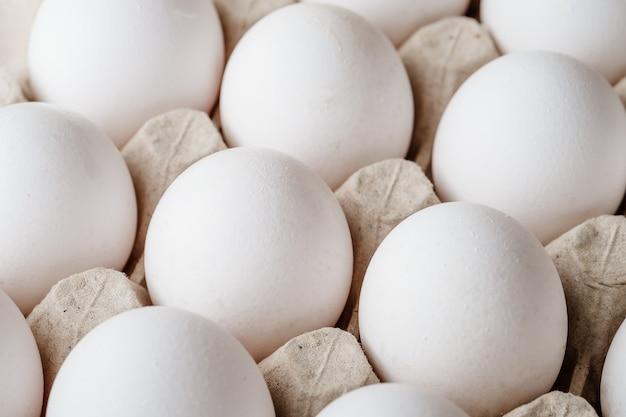 Много белых куриных яиц в лотке
