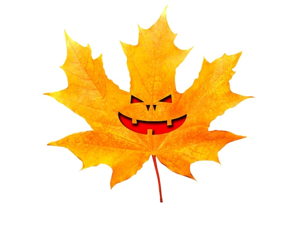 Maple leaf with halloween face isolated on white background