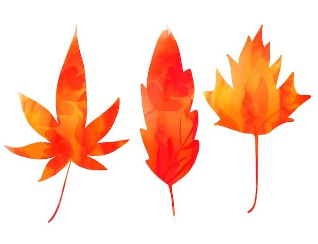 Кленовые листья, нарисованные силуэтами красных и оранжевых листьев. осенний графический элемент для канцелярских товаров, баннеров и обратно в школу.