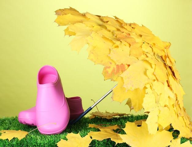 メープルは緑の草の上に長靴と傘を残します