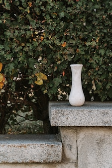 Marble empty vase on green leaves