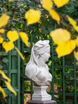 Marble statue surrounded by autumn foliage. saint-petersburg.