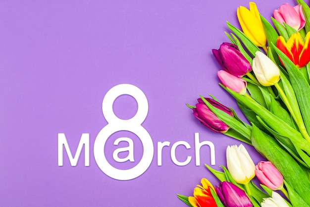 3월 8일, 세계 여성의 날. 보라색 배경에 튤립, 텍스트에 대 한 장소.