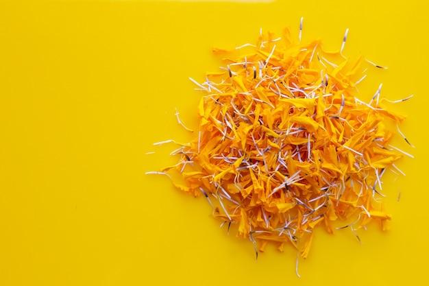 Лепестки цветов календулы на желтом
