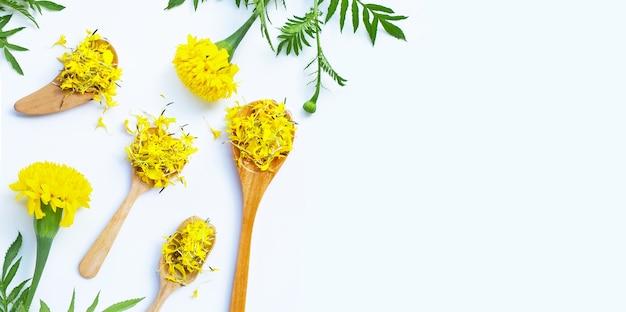 マリーゴールドの花。
