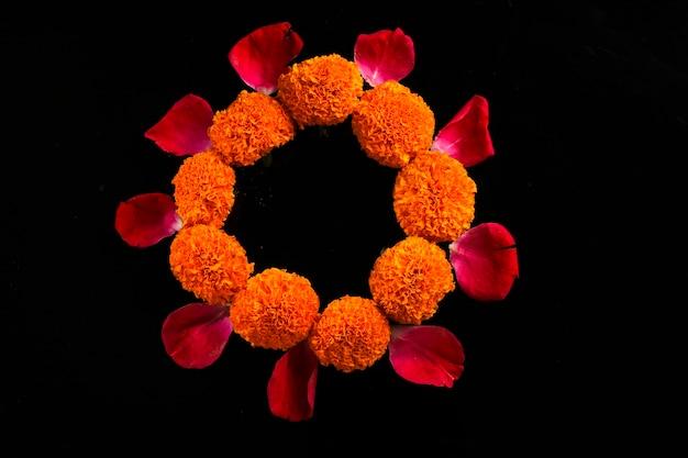 Цветы календулы в темноте