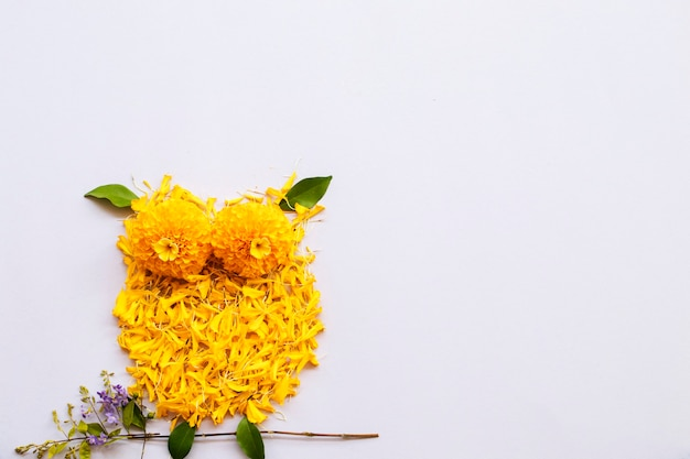 Marigold petal yellow flowers arrangement owl bird