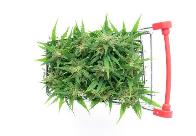 Marijuana flower in shopping cart isolated