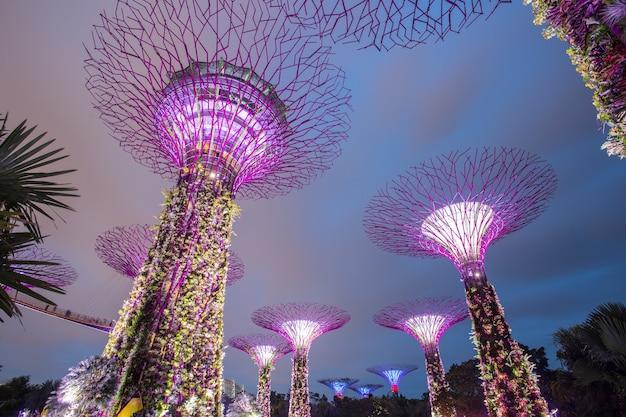 マリーナベイ、シンガポール、2015年3月16日:シンガポールのガーデンバイザベイでショーを見る人々のためのビッグツリーライトショーの夜の時間
