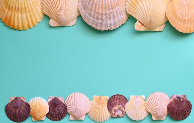 Морская рама из ракушки японского морского гребешка