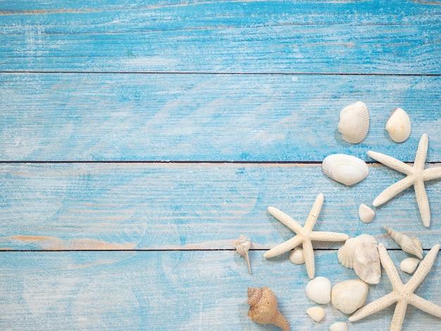 Marine objects, shells and starfish on wood