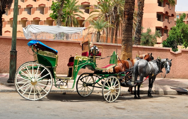 Marrakech traditional carriage