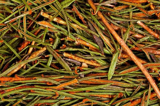 Болотный северный лабрадор чай ledum palustre. фото высокого разрешения.