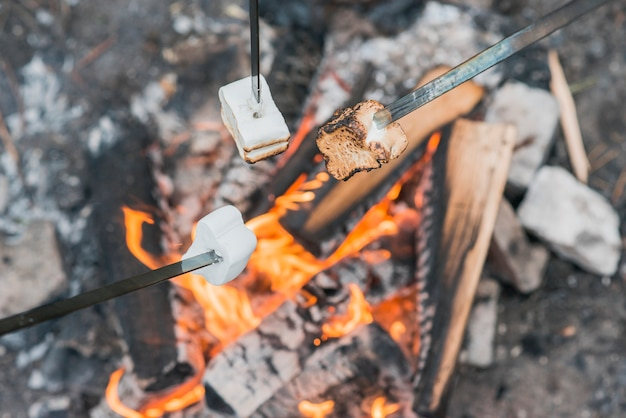 Marshmallow on bonfire flames