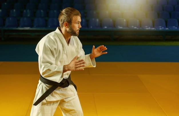 黒帯の白い着物を着た武道家の男が屋内で戦う姿勢で立っています。スポーツポートレート