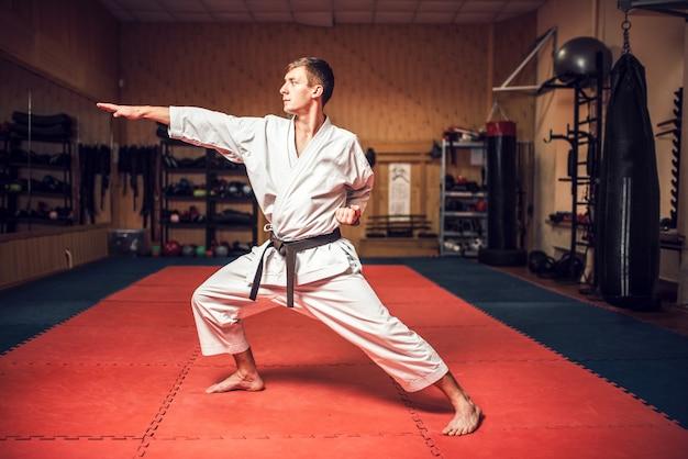 체육관에서 전투 훈련에 무술 마스터