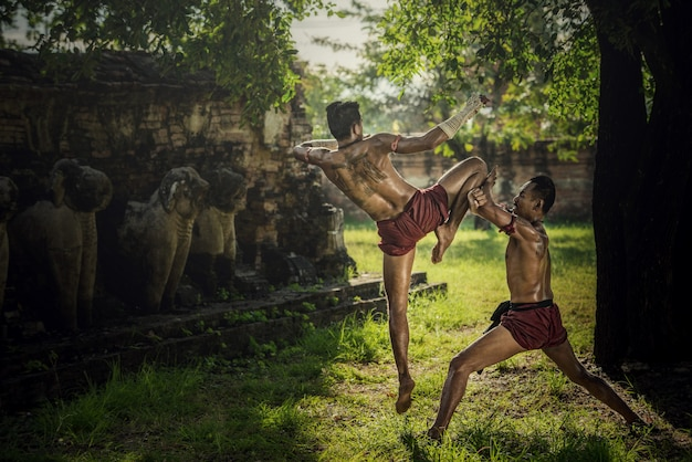 Martial arts of muay thai,thai boxing at ayutthaya historical park in ayutthaya, thailand