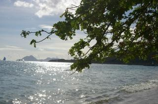 Мартиника остров, иль