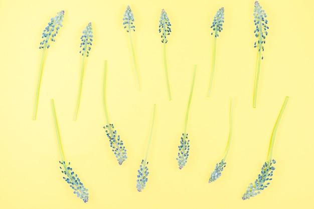 Mascara flowers on yellow background