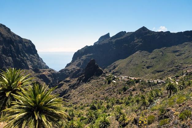 スペインのマスク村、人気の観光地テネリフェ島のマスク村