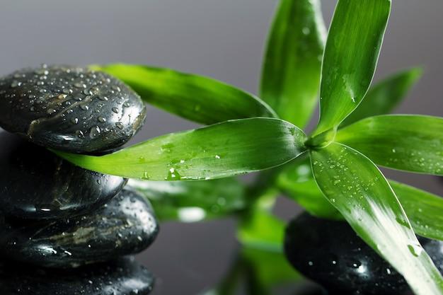 Массаж камнями и бамбуковыми листьями